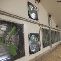 Ventiladores de bajo consumo avicultura