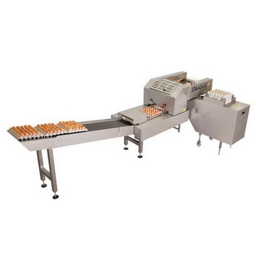 Empaquetadora de huevos gallinas farmpacker