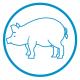 Icona porcino