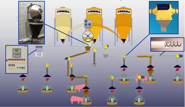 sistema multifas granjas porcino